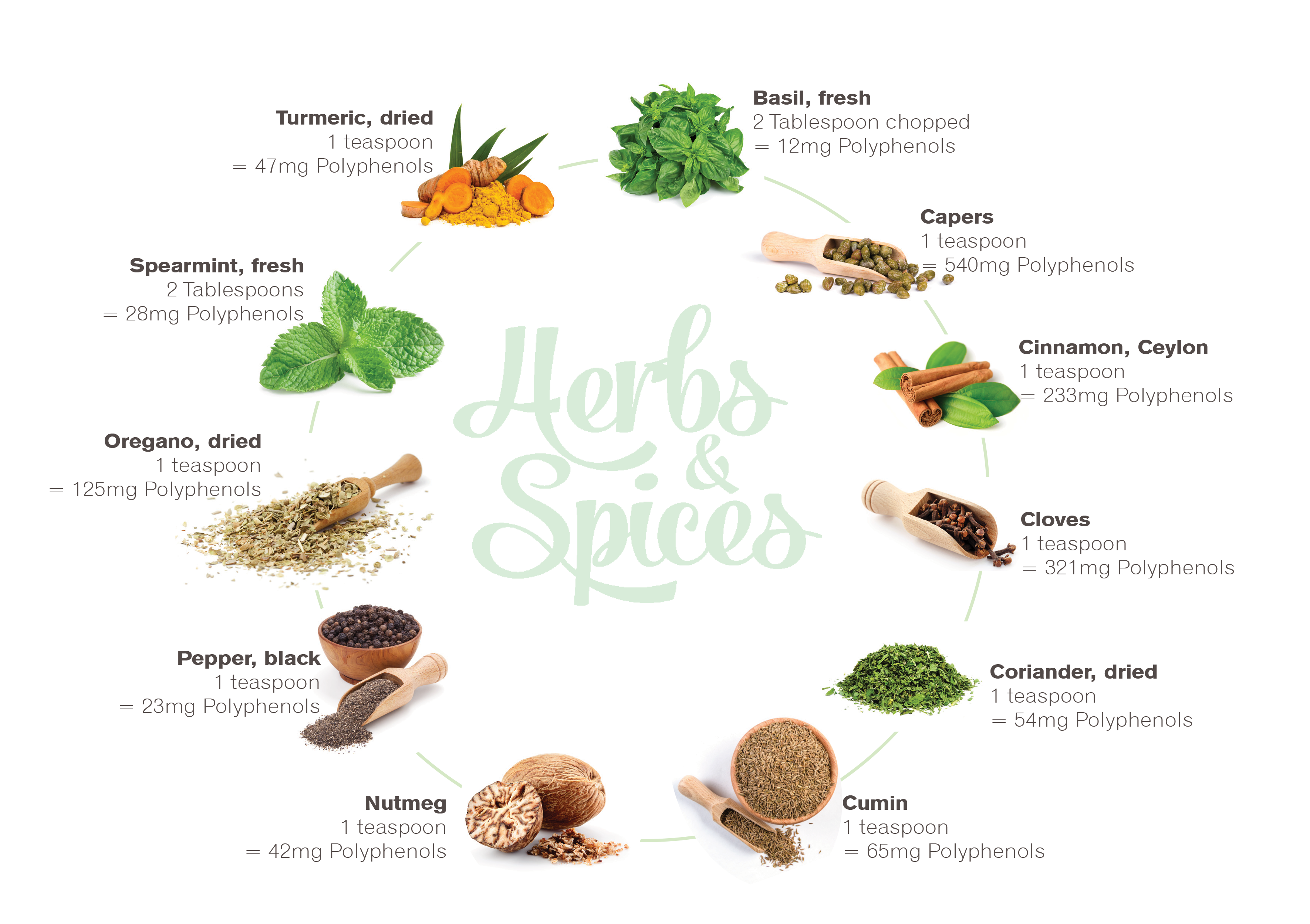101019---Herbs-&-Spices-art2