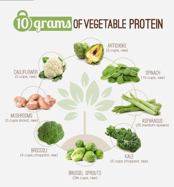 10gVegetableProtein