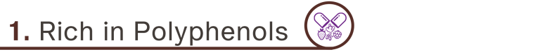Cacao-Benefits(5)-01