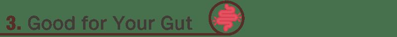 Cacao-Benefits(5)-03