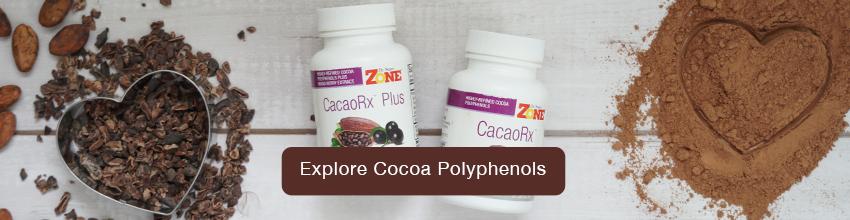 Explore-Cocoa-Polyphenols-Banner