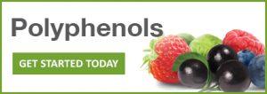 Zone Diet Polyphenols