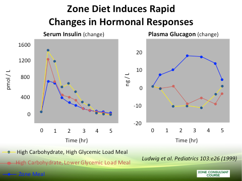 Chart displaying the Zone Diet's effect on hormonal responses
