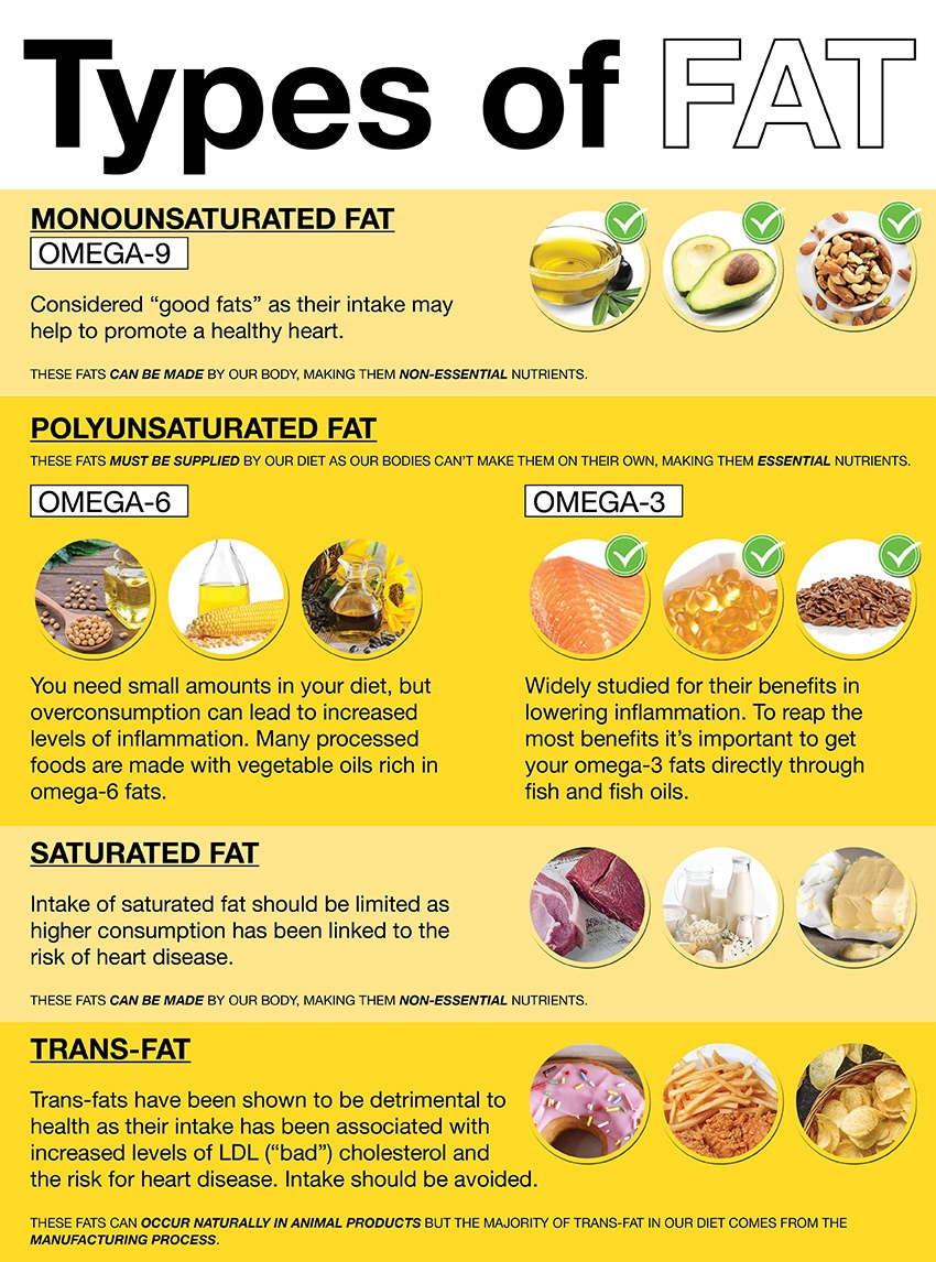 Fats Explained What Is Fat And Why Do We Need It