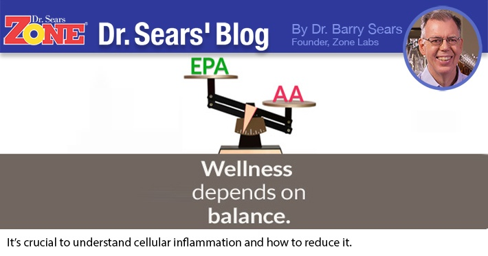 Dr. Sears' Blog: What is Cellular Inflammation?