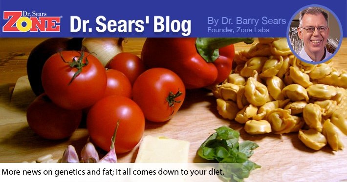 Dr. Sears' Blog: More Bad News On Toxic Fat With A Glimmer Of Hope