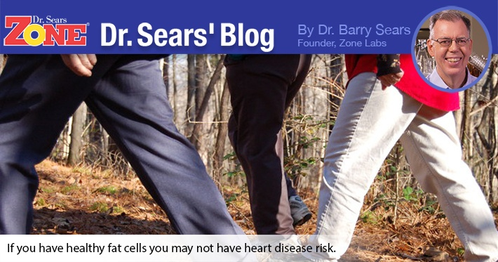 Dr. Sears' Blog: If You're Fat, You May Be OK
