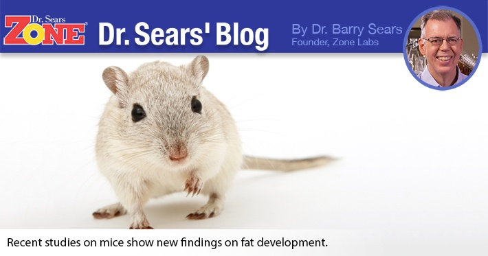 Dr. Sears' Blog: Ominous New Warnings Issued About Toxic Fat